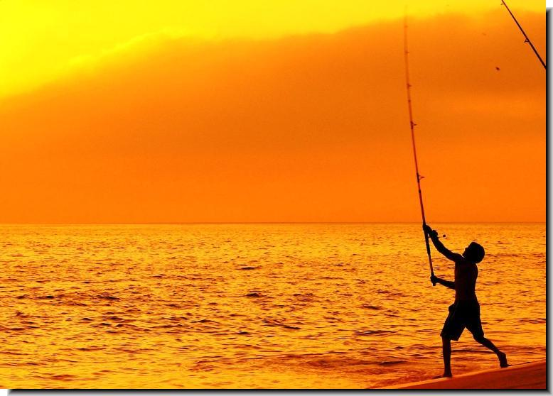 Gambia sport fishing guide for How to fish from the beach