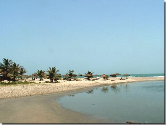 - palm-beach-3
