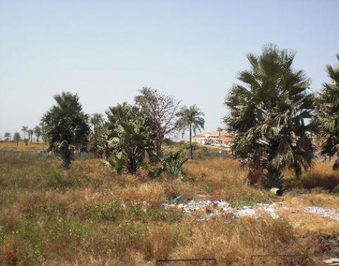 Property For Sale Sanyang Gambia