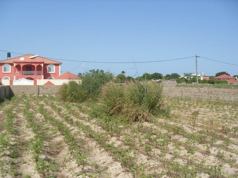 Property For Sale In Bijilo